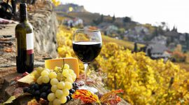 Виноградники Испании